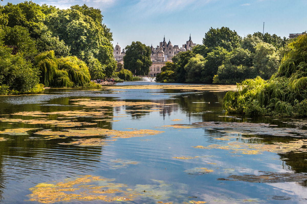 UK Fixer St James Park Royal Park Location applying for permits in London